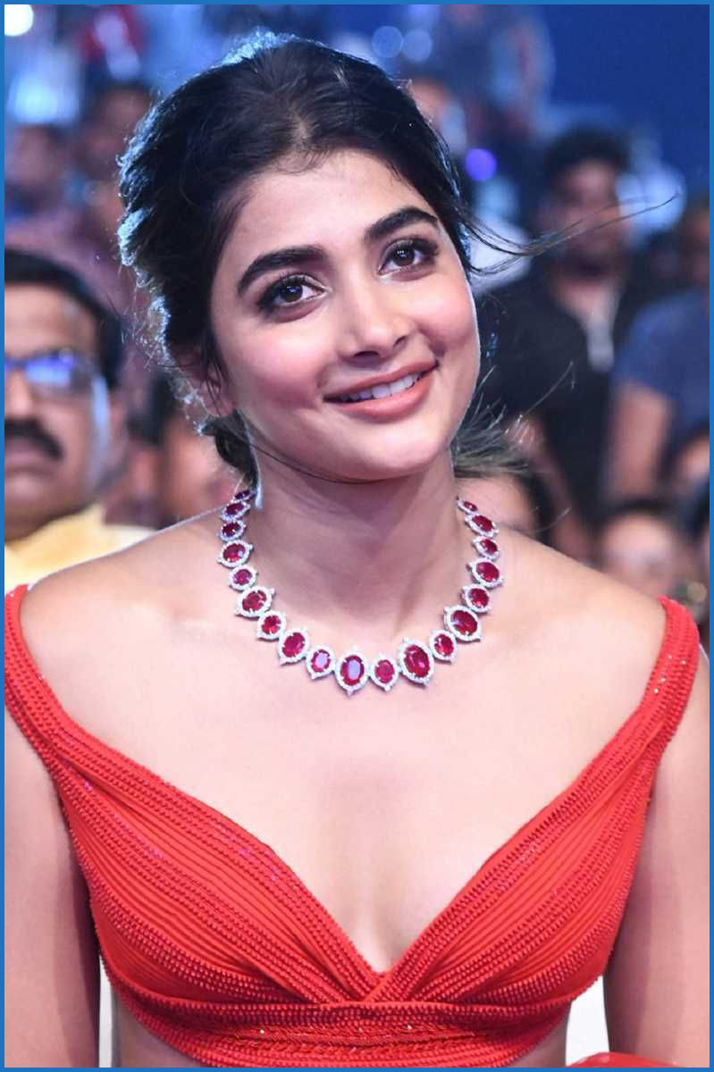 I and Allu Arjun put our heart to shoot the song: Pooja Hegde