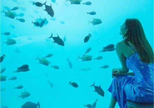 Kajal Aggarwal honeymoon undersea
